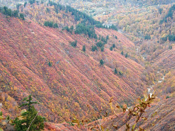 すわ山火事か、台倉山付近から望む風景