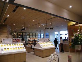 気軽に健康になれる!?漢方カフェ「KAMPO煎専堂」が浅草に誕生