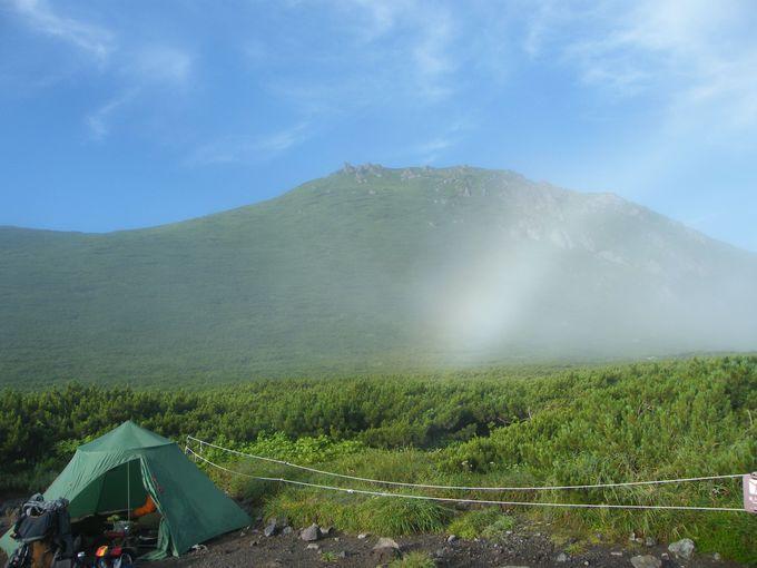 頂上付近の開けた場所がキャンプ指定地「羅臼平」です