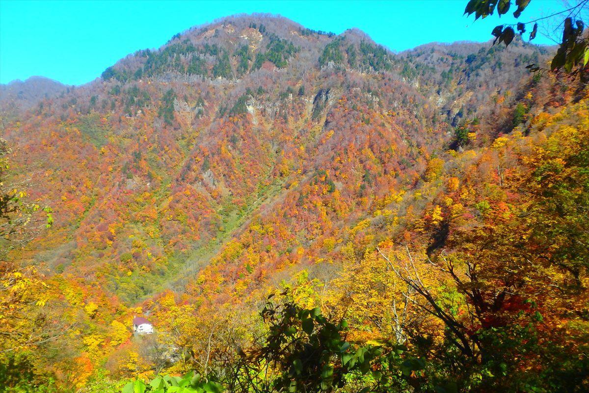 中宮温泉の紅葉は10月中旬〜11月