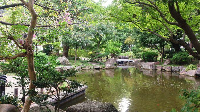 日本庭園で一休み