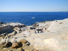 南紀のリゾート白浜エリアは吉野熊野国立公園の名勝の宝庫!