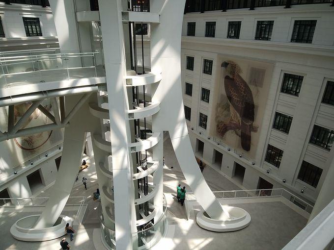 午後〜夕方:イントラムロス南部で博物館や風景を楽しもう