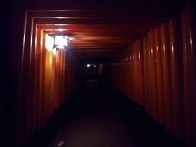 朝でも夜でも!京都の伏見稲荷大社で稲荷山ハイキング