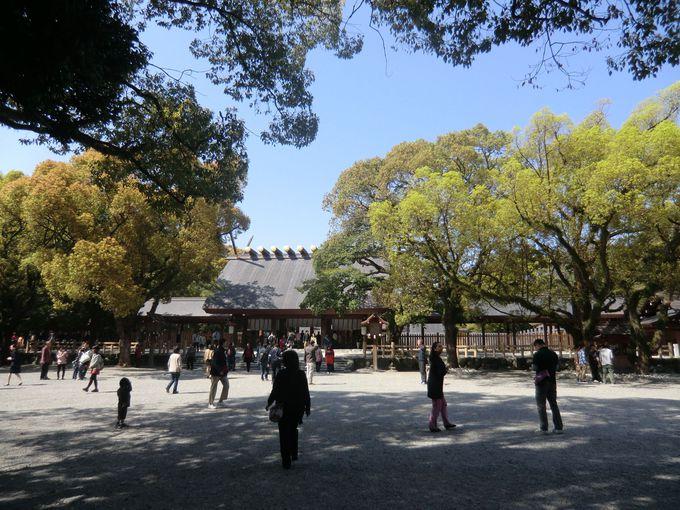 ひつまぶしをいただくまでのひまつぶし・・・ではありませんが、待ち時間は近くの熱田神宮へ