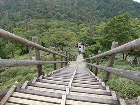関西の秘境、奈良・大台ケ原の山頂からは天気がよければ富士山も!登山道も整備され、ハイキングに最適♪