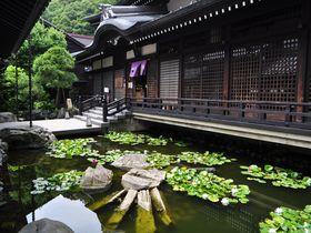 城崎温泉周辺の観光スポット10選 湯めぐりに+αで楽しもう
