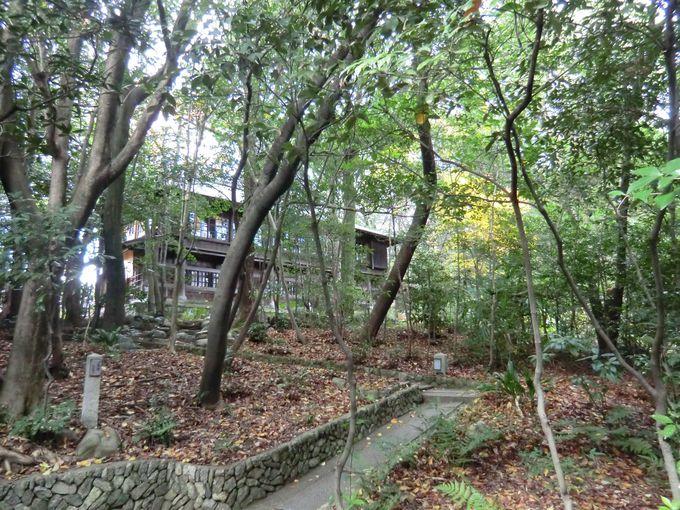 正式に「茂庵」の入り口案内があるのは神楽岡コースのみ