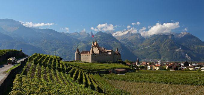 有名な白ワインの産地、エーグル