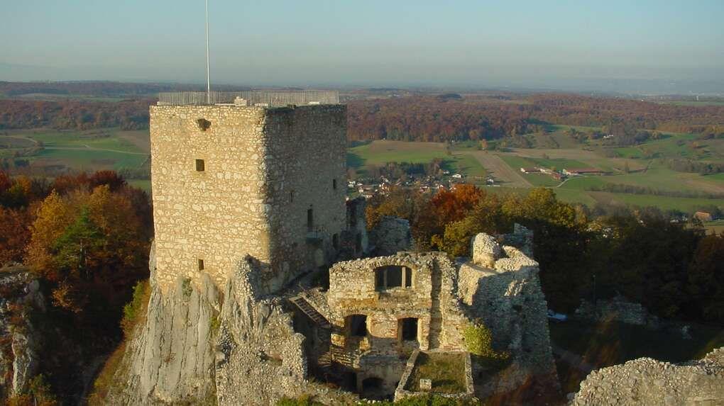 フランスの隅っこにあるお城見学も、バーゼルなら可能!