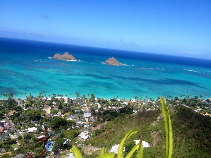 全米No.1ビーチを一望できる絶景ハイキングトレイルコース