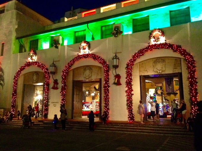 もちろん市庁舎内もクリスマス一色