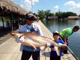 釣り好き必訪!バンコク近郊で50kg級巨大ナマズを釣ろう