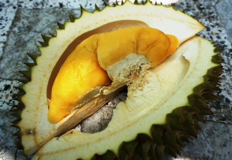 ドリアンにマンゴー!タイの果樹園で南国フルーツ食べ放題