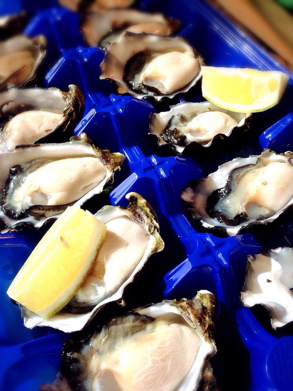 レストランより新鮮!生牡蠣を堪能しよう
