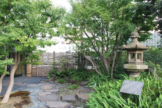 銀座の街を一望できる「屋上庭園」