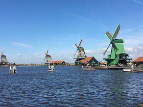 チューリップに風車村…見所を効率よく!アムステルダム発1日ツアー