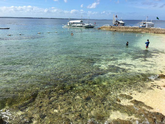 目の前に泳ぐ魚がみえる!プライベートビーチ