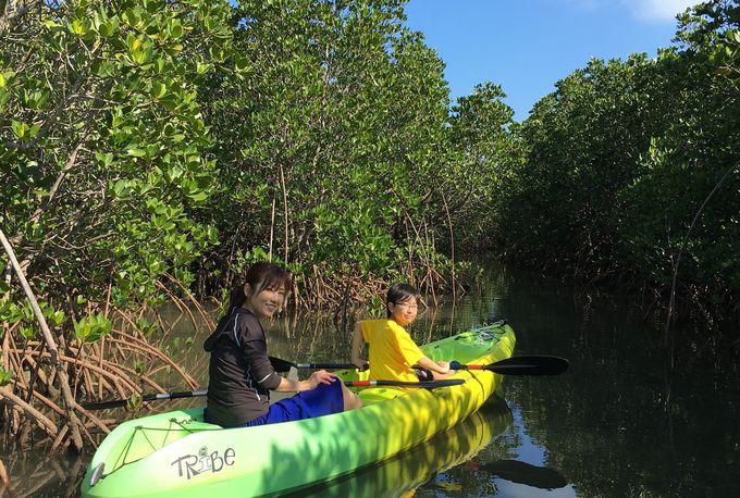 自然の偉大な力を体感できるツアー