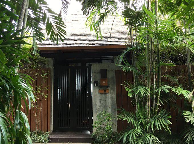 熱帯雨林のなかに佇むタイ伝統建築の優美なヴィラ