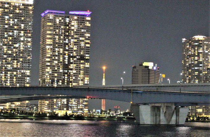湾岸エリアのマンション群と東京スカイツリー