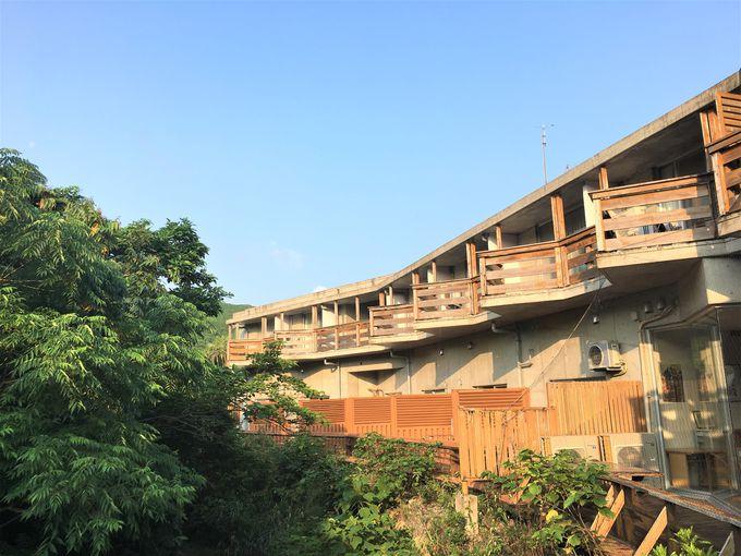 目の前に雄大な熱帯雨林を臨む客室