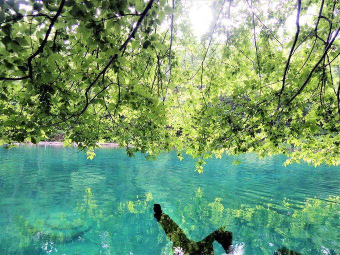 9.支笏湖