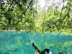 支笏湖のおすすめ観光スポット8選 日本一の透明度と絶景を満喫!