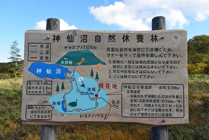 「神仙沼」までのアクセスは?ニセコパノラマラインで絶景ドライブを
