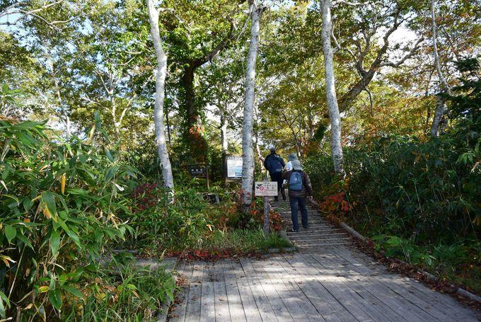 「神仙沼」入口にはレストハウスと駐車場が完備!初心者も楽しめる絶景ハイキング