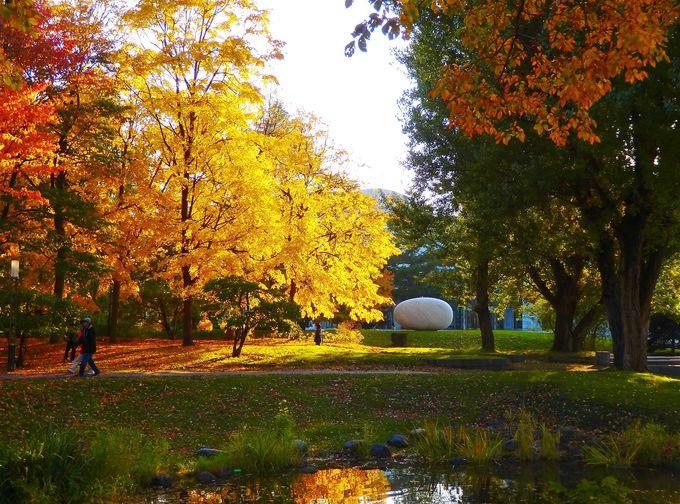 中島公園グルメ&美スポット!「豊平館」と「札幌コンサートホールKitara」