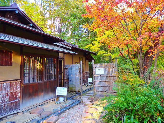 公園の中に公園が。「八窓庵」のある日本庭園が美しい