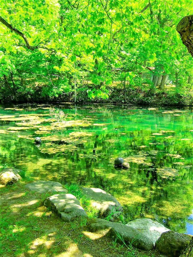 富良野絶景の穴場!「鳥沼公園」のエメラルドグリーンに驚愕