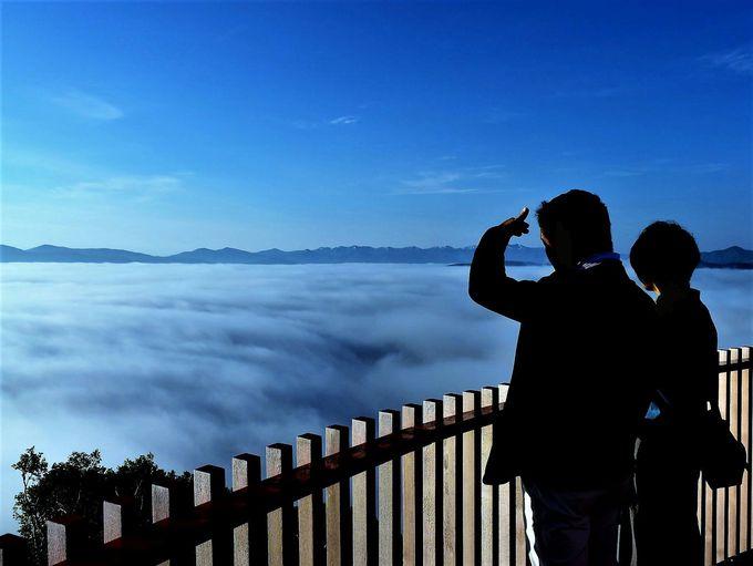 雲の上をお散歩!「Cloud Walk(クラウドウォーク)」