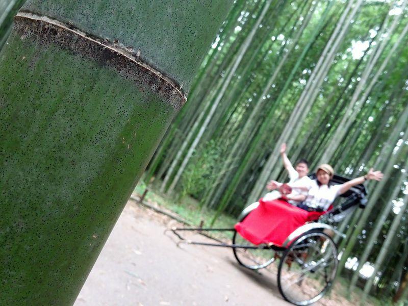 初めての京都旅でも安心!1泊2日の京都満喫モデルコース