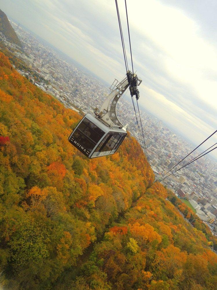 紅葉狩りを楽しむ秋 シャッターチャンスはココ!