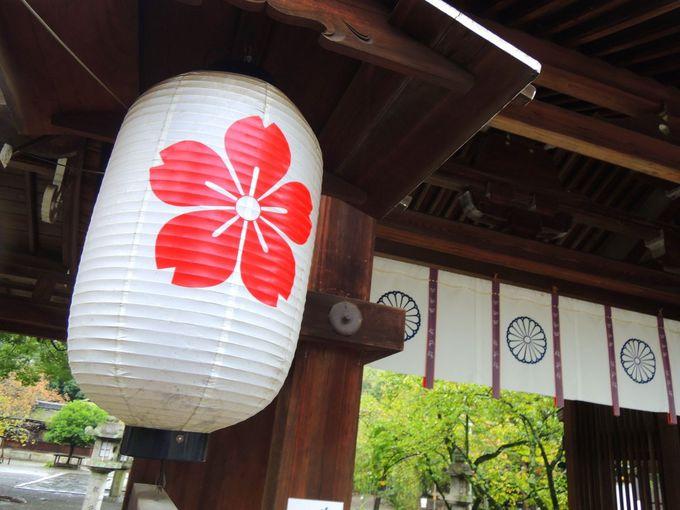 サクラサク!平野神社のサクラパワーで合格をイメージせよ!