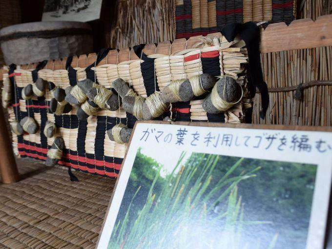 アイヌ文化の伝統の見学と体験!
