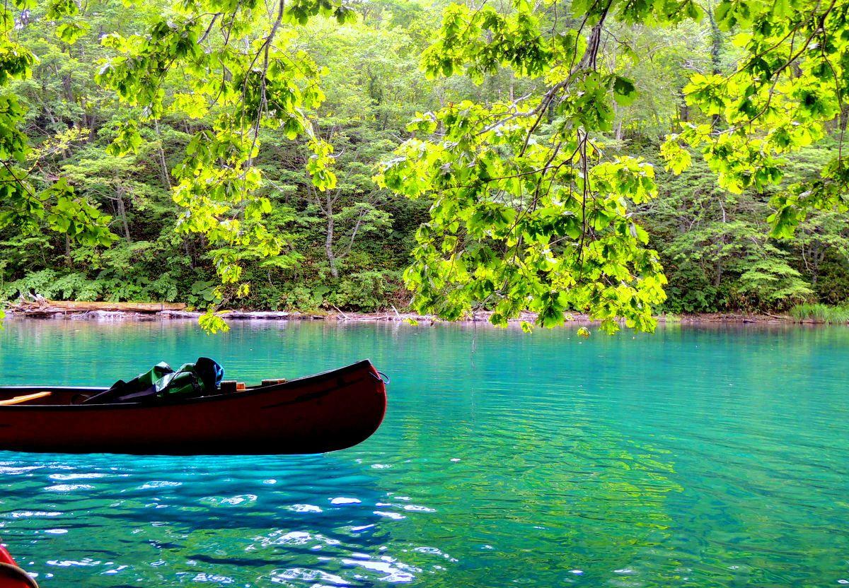 1.水質日本一!「支笏湖」ブルーをカヌーから眺めよう