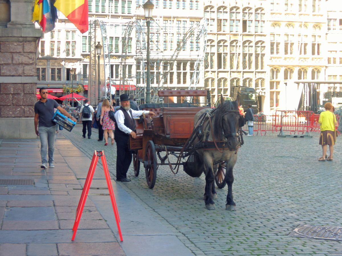 大聖堂や市庁舎をはじめとした街並みには童話の世界の面影も!