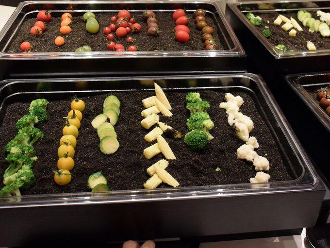 北海道の食材が贅沢に楽しめるレストラン
