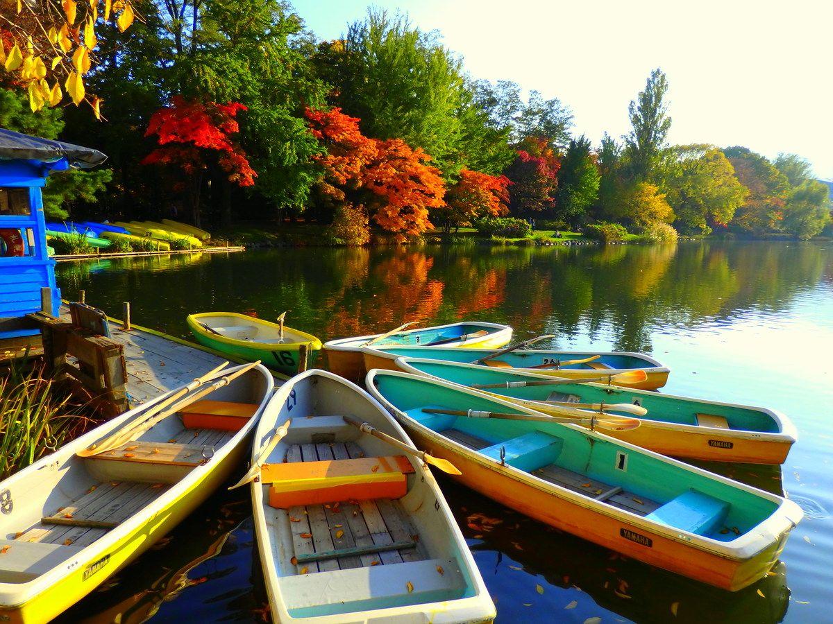 札幌中心部のオアシス「中島公園」四季のパレット