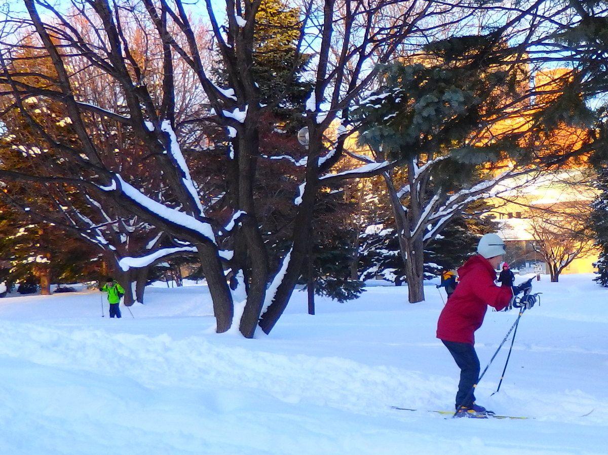 雪遊びだって楽しめる!歩くスキーはなんと無料!