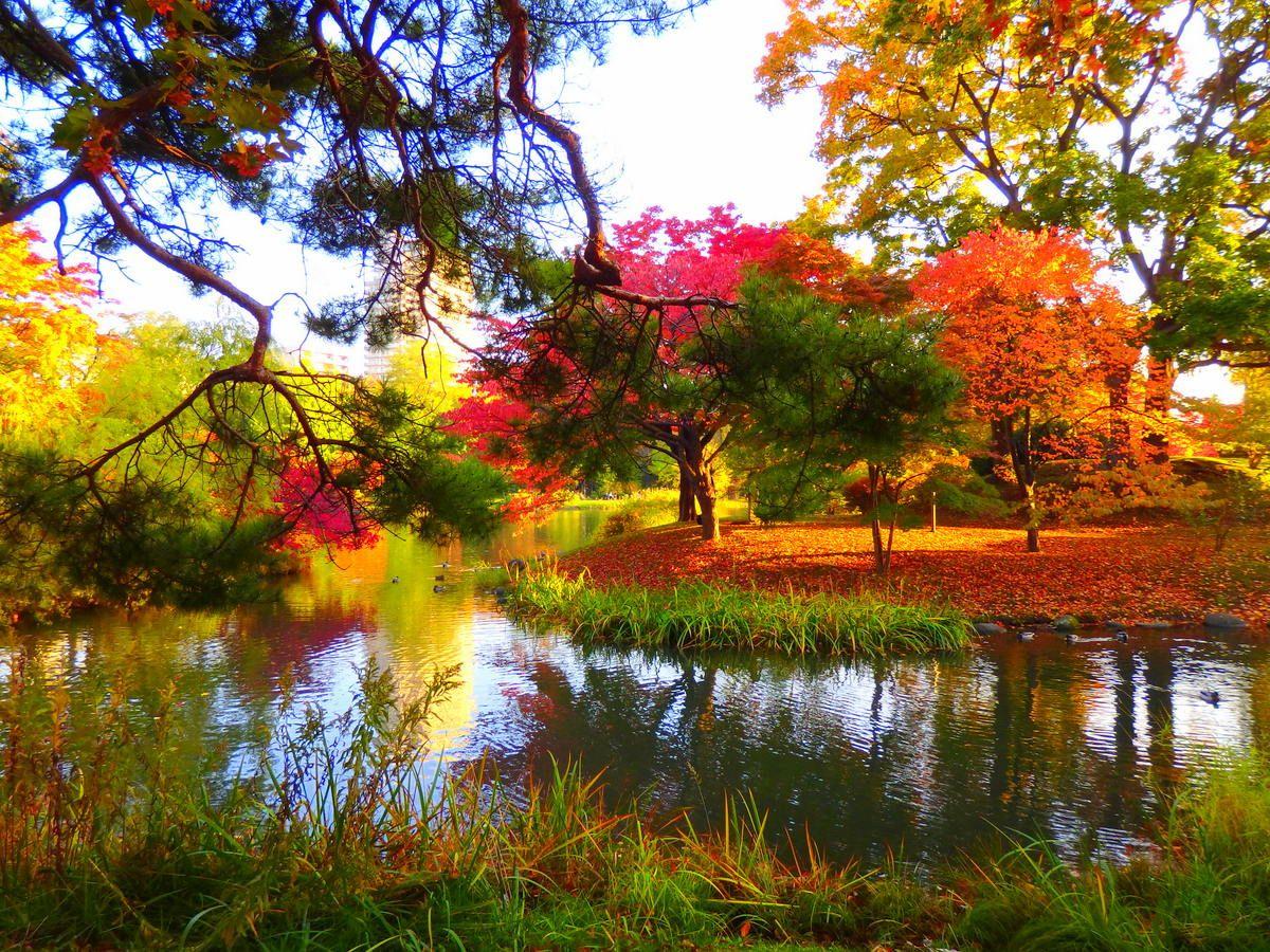 6.中島公園(札幌市)