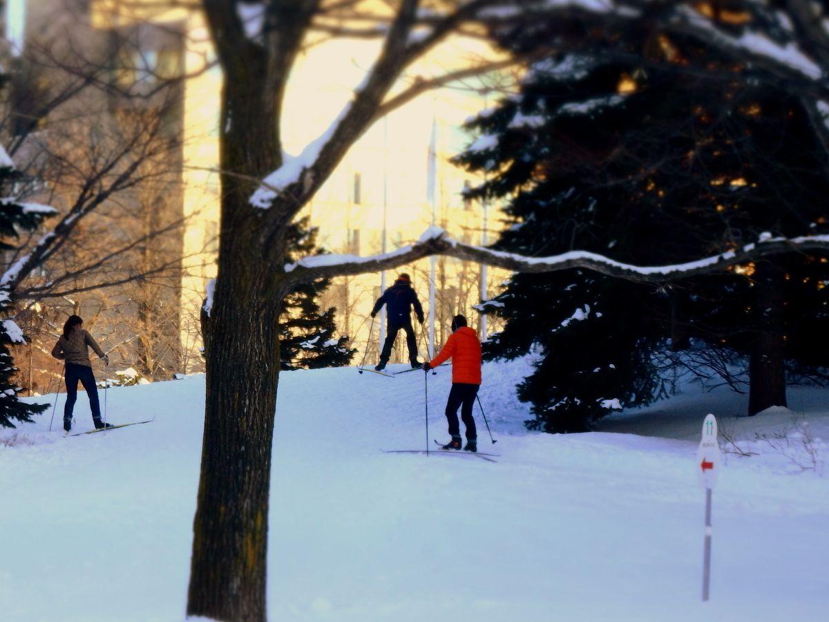 1周15分!はじめての雪体験にピッタリな初心者向けコース