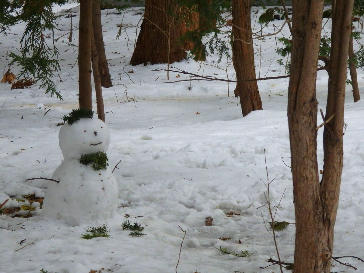 札幌市内で楽しめる冬の雪遊び