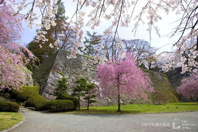 「盛岡城跡公園(岩手公園)」で盛岡城の旧跡と文学碑巡り