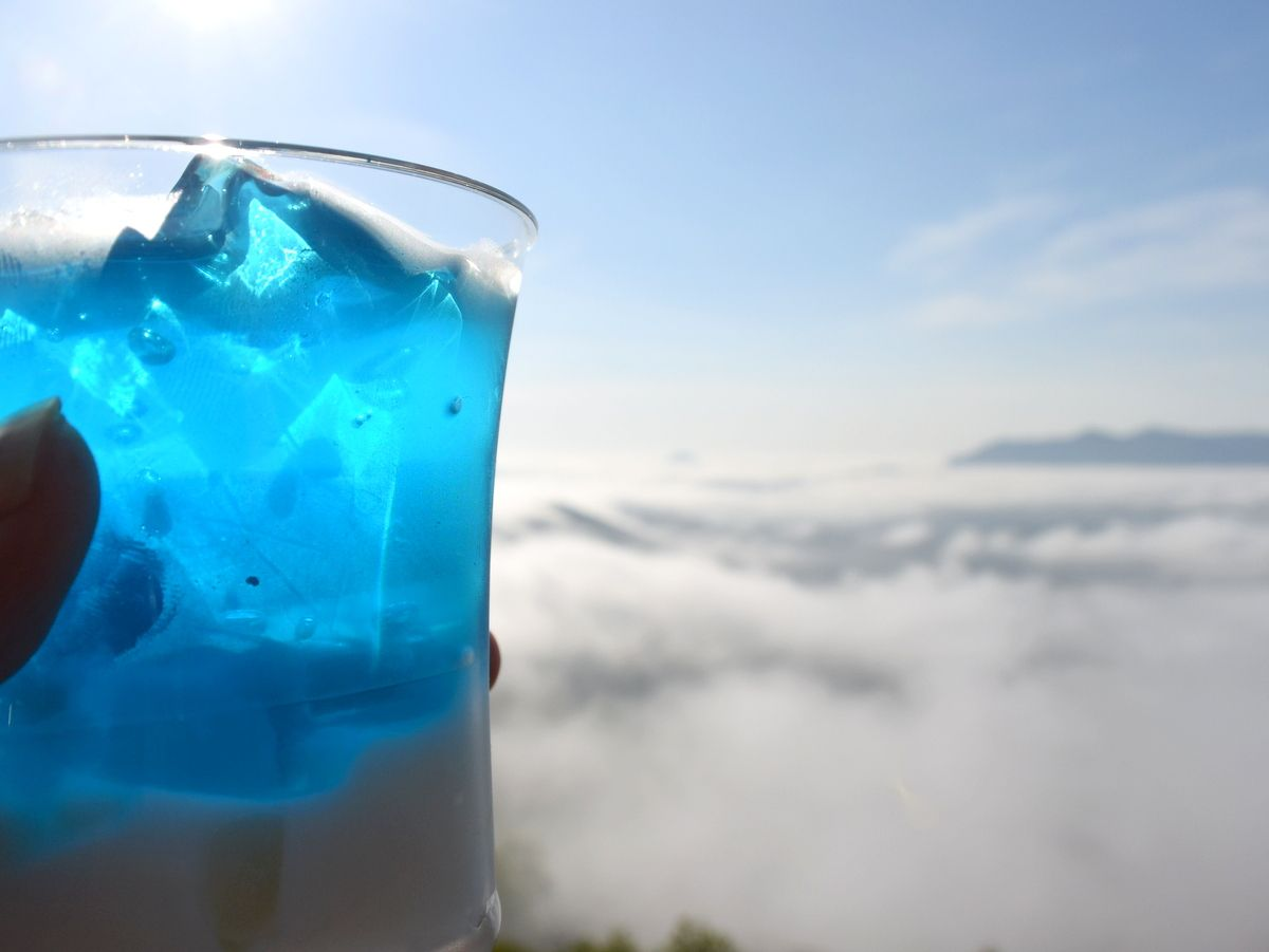 雲の上も下も絶景!?星野リゾートトマム「てんぼうかふぇ」「雲のしたカフェ&マルシェ」が美しい