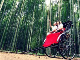 京都日帰りデートモデルコース 人気スポットも京都らしさもたっぷり