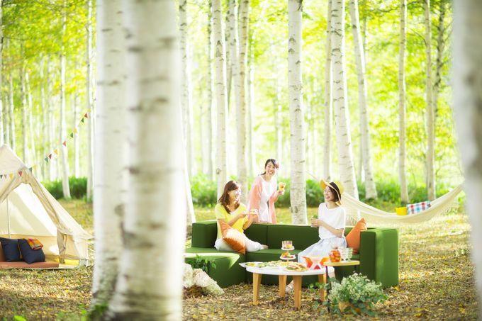 自然の中で「時間」を愉しむ大人のピクニック